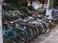 Bicycles at Fudan University