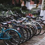 Bicycles at Fudan University